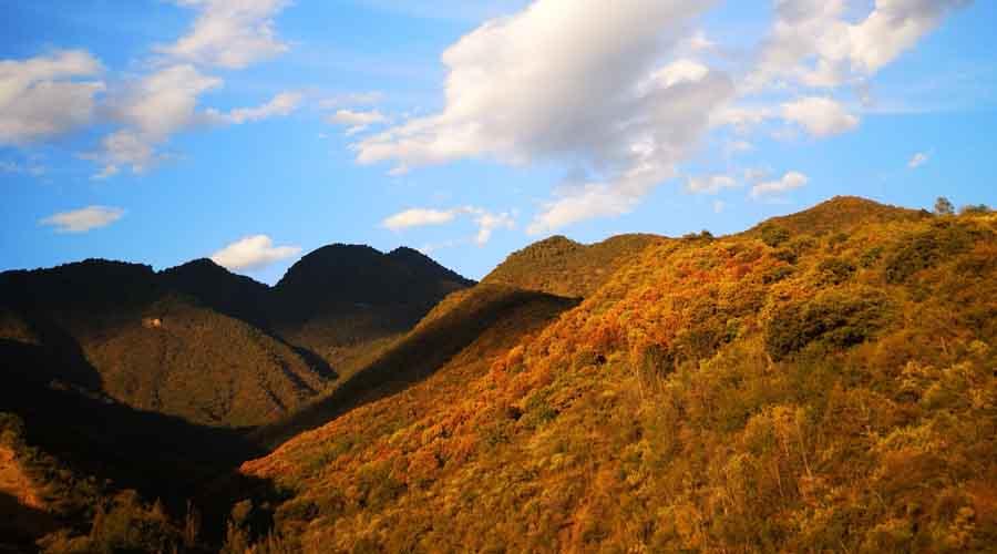 Parque Nacional Benito Juárez una excelente opción en Oaxaca